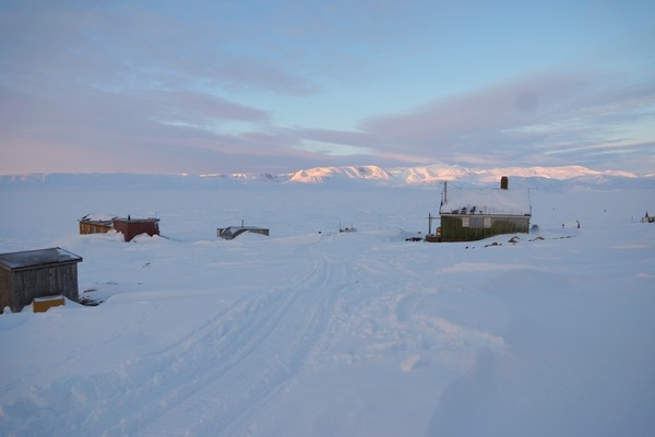 ours-polaire, chasse, arctique, greonalnd, ittoqqortoormiit