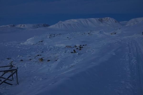 ittoqqortoorrmiit,nuit-polaire,solstice,hiver