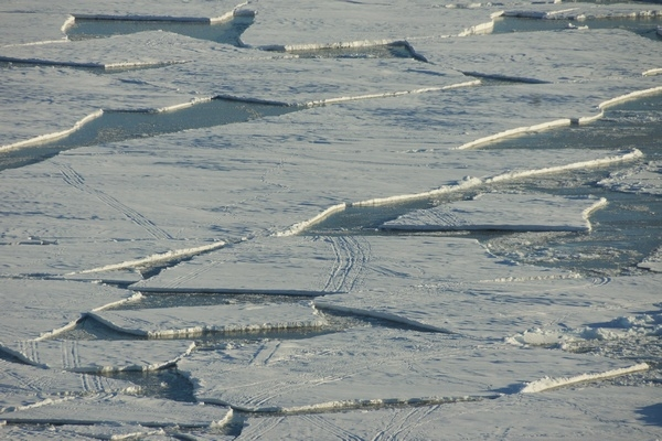 banquise,glace,tsunami,scoresby-sund